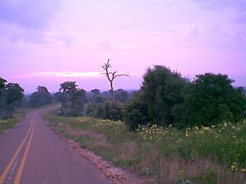 (Bha) - Country Road at Sunrise