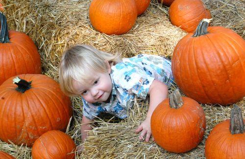 (Cn) - Alex Hiding in the Pumpkins