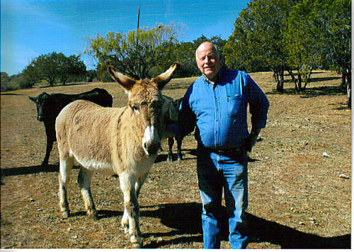 (Aca) - Which One is the Donkey?