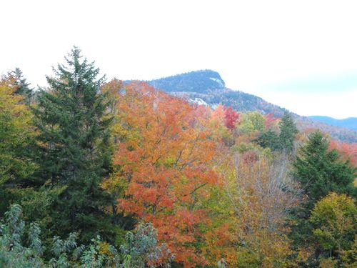 (Aec) - Jody's Scenes of New England